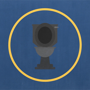 99 second animated explainer on toilets around the world